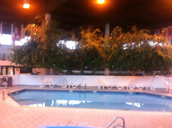 ويندهام جاردين رومولوس مطار ديترويت مترو: piscina 