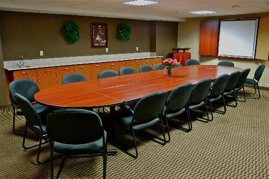Comfort Inn University: Conference Room