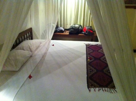 Bhanuswari Resort & Spa: Habitación