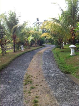 Bhanuswari Resort & Spa: Camino en el hotel