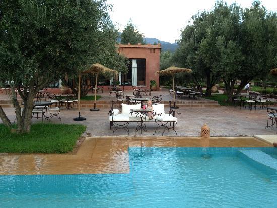 Pool view photo de ksar shama ouirgane tripadvisor for Piscine de fontenay tresigny