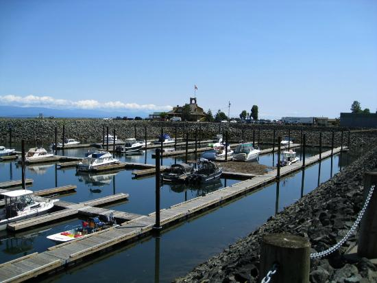 Salmon Point Resort RV Park & Marina: Marina and Restaurant