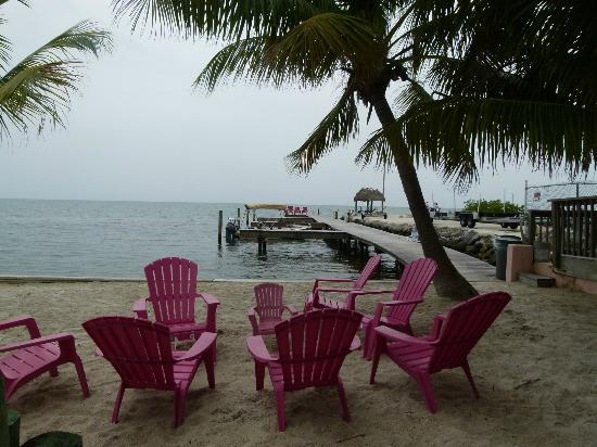 Sands of Islamorada Hotel: Aereal view