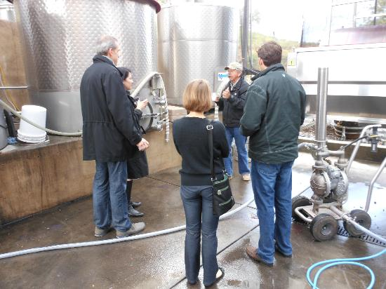 Wine Country Journeys LLC: talking w the winemaker