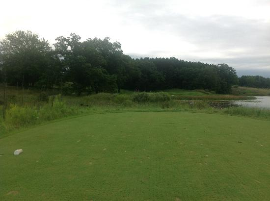 Stanwood, MI: Difficult par three