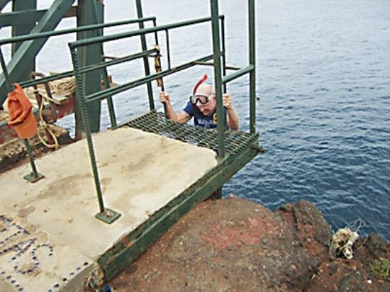 South Point (Ka Lae) dan Pantai Green Sand: Older snorkel dude climbs up seawall/cliff access ladder