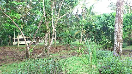 Casa Grande Ecolodge at Pacuare Reserve: estación