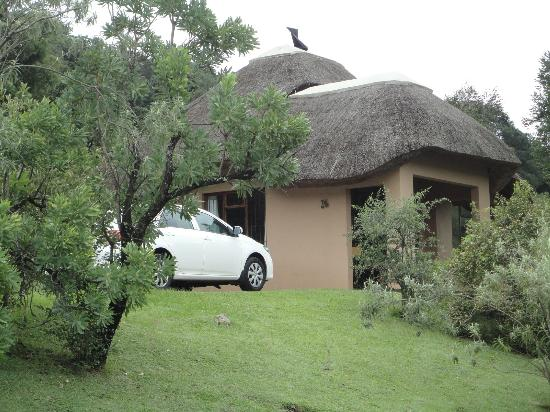 Thendele Hutted camp: Hutted Accomodation