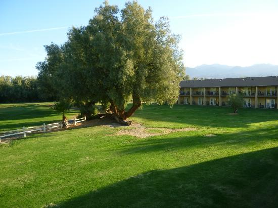 Furnace Creek Inn and Ranch Resort: campo da golf (panorama dalla camera)