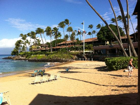 Napili Kai Beach Resort : Beach line