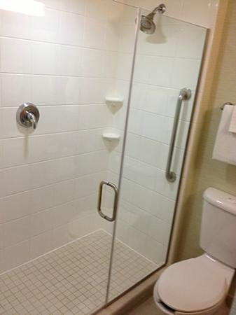 Courtyard Chevy Chase: glass wall shower