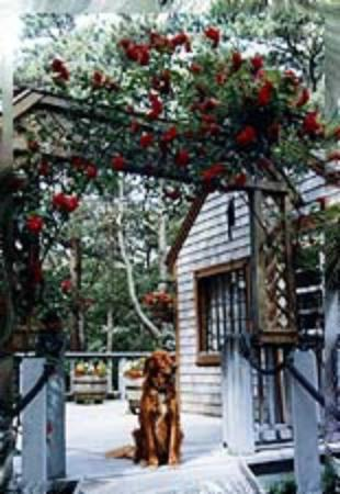 Ocean Gold Bed & Breakfast: Porch