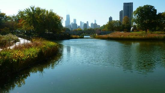 Chicago Skyline over South Pond, Lincoln Park
