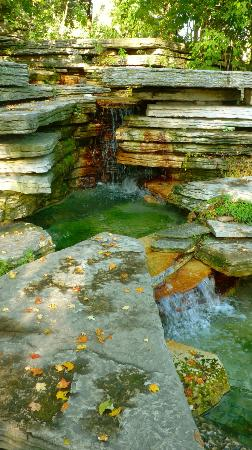 Prairie Waterfall, Alfred Caldwell Lily Pool, Lincoln Park