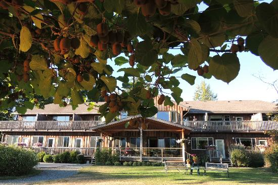 Kiwi Cove Lodge
