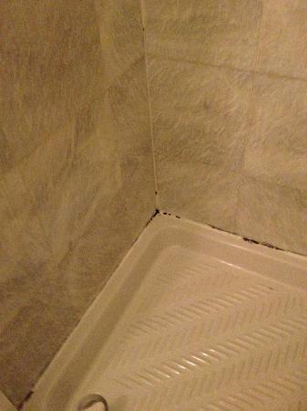 Mythos Hotel: Piatto doccia