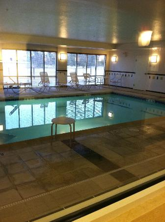 Fairfield Inn & Suites Boise Nampa: Pool Area