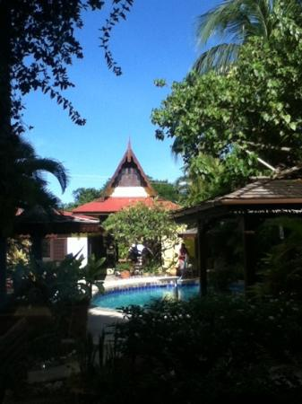 The Ginger Lily Hotel: view from room 1