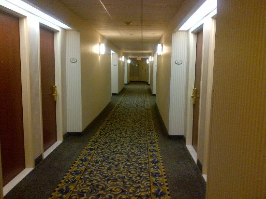 BEST WESTERN PLUS Travel Hotel Toronto Airport : The hallway to my room