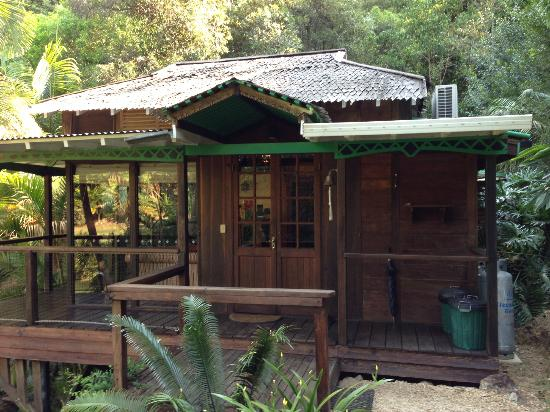 Amazing Wollumbin Palms Retreat at Mt Warning: our little cabin