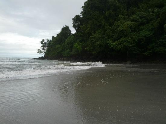 Tulemar Bungalows & Villas: playa
