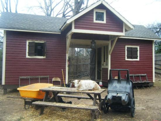 The Social Goat Bed & Breakfast: barn
