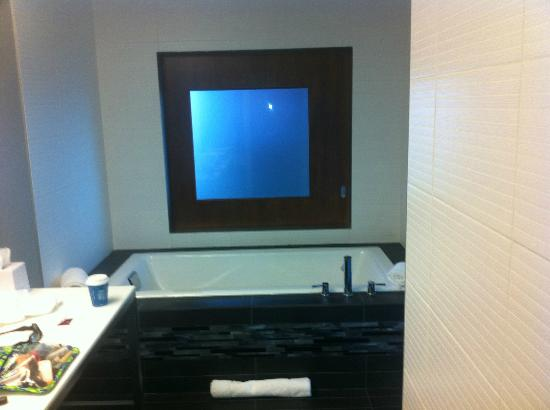 Aloft Asheville Downtown: Sliding glass window that separate the bathroom and the main living area in the suite.