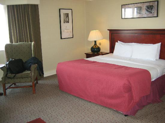 Ballsbridge Hotel: Standard Room