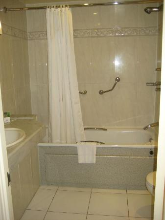 Ballsbridge Hotel: Bathroom