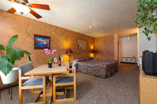 Mountain View Lodge: Single King