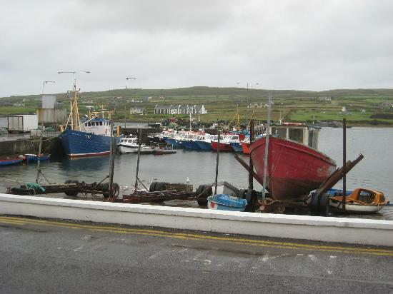 The Moorings Guesthouse: The view directly outside of Moorings Guesthouse of Portmagee harbour