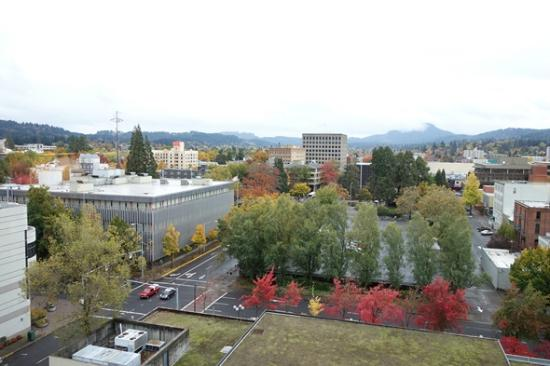 Hilton Eugene: View from Room
