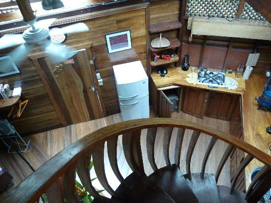 Tree House Lodge: View from upstairs - Beach House