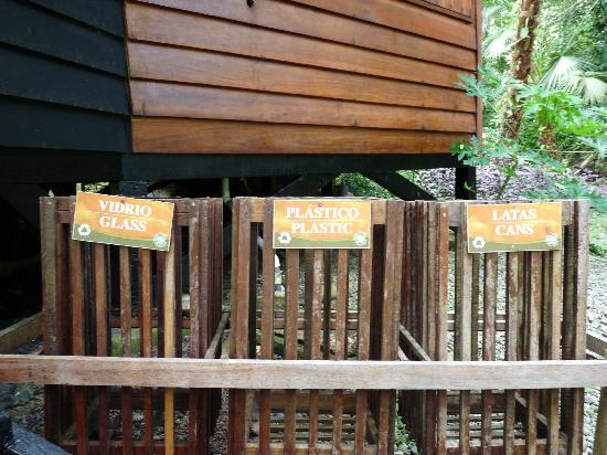 Tree House Lodge: Love how they care about recycling