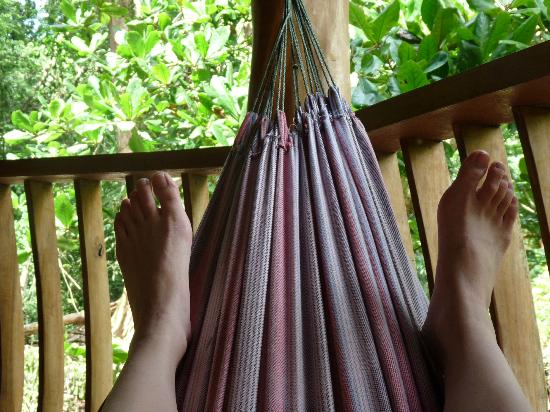 Tree House Lodge: Hammock chillin' time