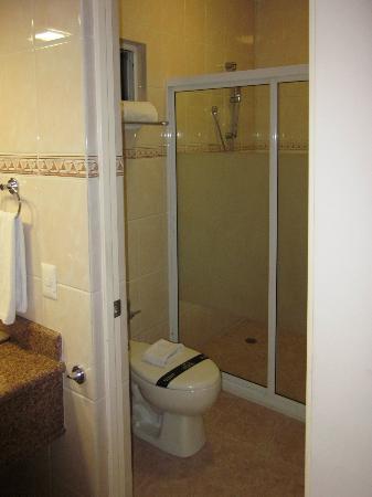 Comfort Inn Monterrey Norte: Vista del baño