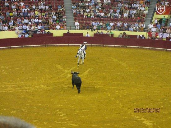 Campo Pequeno: 騎馬闘牛