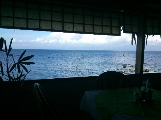 Quo Vadis Dive Resort: Best view dinning place