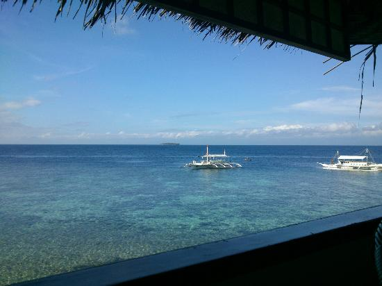 Quo Vadis Dive Resort: Awesome view at where we eat