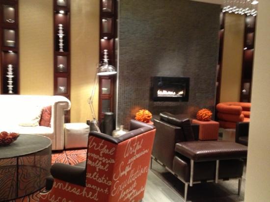 Renaissance St. Louis Airport Hotel: fire place
