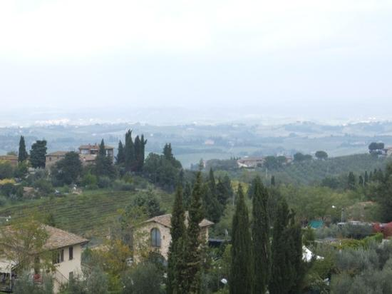 view from Podere il Pino