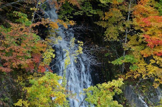 Takinoue Park: 滝の上公園