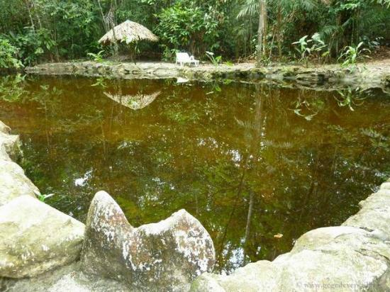 Amazon Ecopark Jungle Lodge: Les piscines naturelles