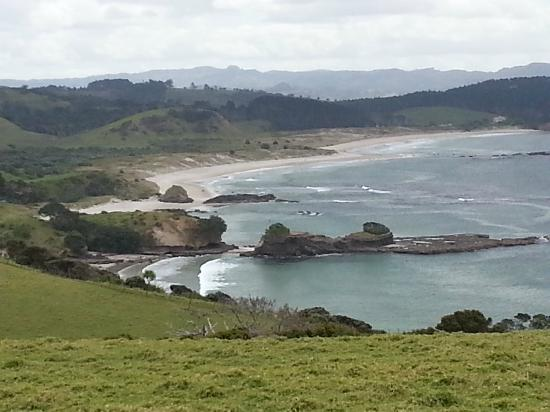 Tawharanui Regional Park: Beautiful beaches and marine reserve, great snorkeling.