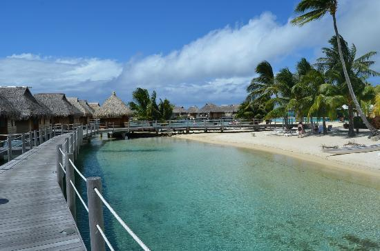 Manava Beach Resort & Spa - Moorea: Beach area and overwater bungalows