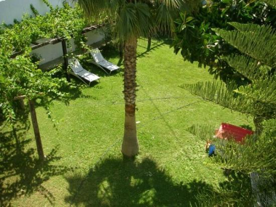 Castello Apartments: Panoramic garden view