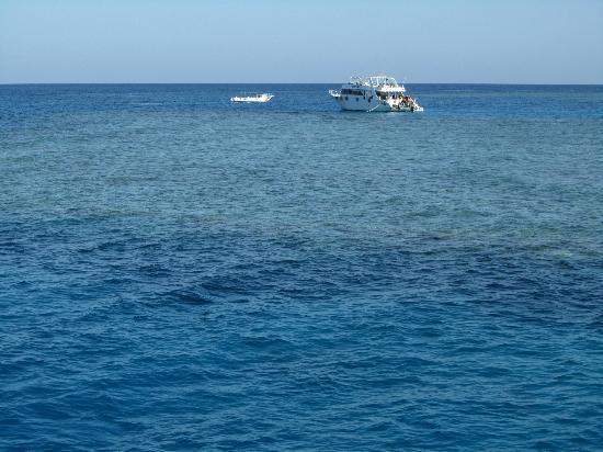 Cleopatra Luxury Resort Makadi Bay: Schnorchelausflug zum Riff