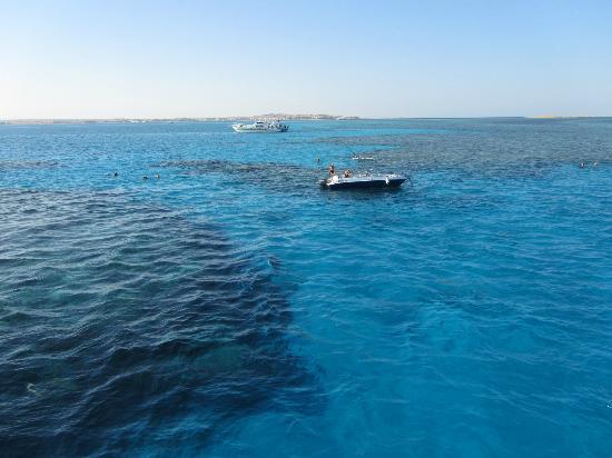 Cleopatra Luxury Resort Makadi Bay: Schnorchelriff Abu Hasheesh Lagoon