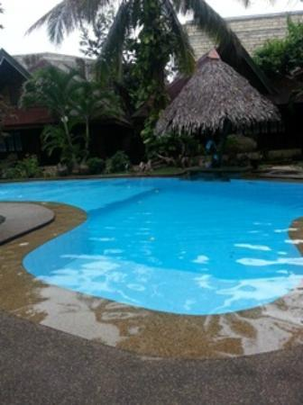 Alona Tropical Beach Resort: swimming pool