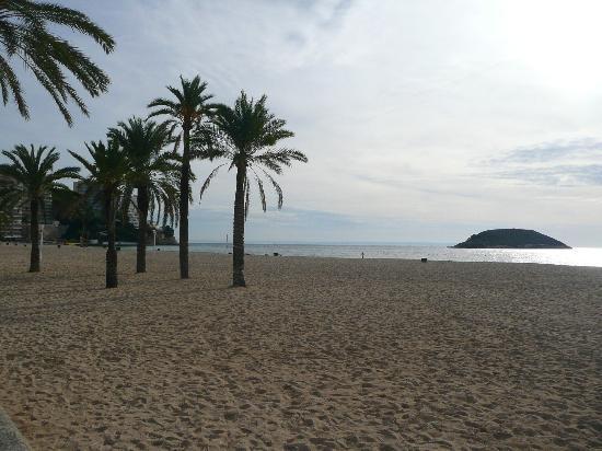 Globales Palmanova: Magaluf beach